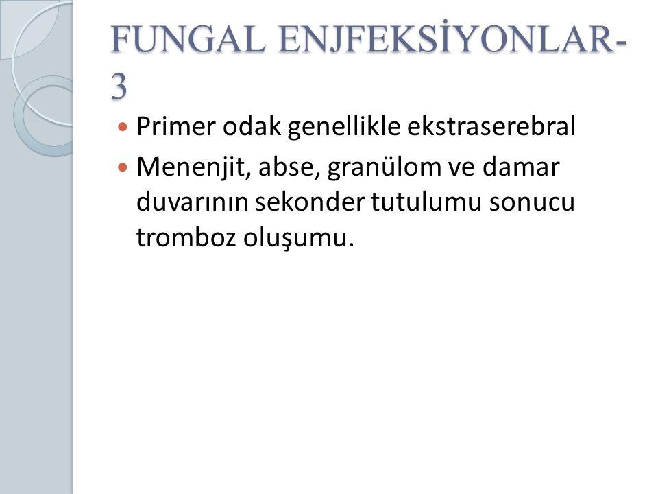 FUNGAL ENJFEKSİYONLAR-3