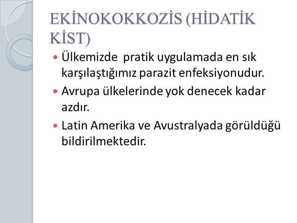 EKİNOKOKKOZİS (HİDATİK KİST)