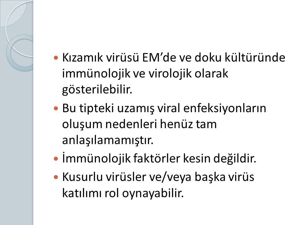 Kızamık virüsü EM'de ve doku kültüründe immünolojik ve virolojik olarak gösterilebilir.