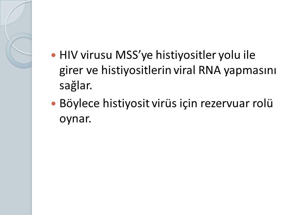 HIV virusu MSS'ye histiyositler yolu ile girer ve histiyositlerin viral RNA yapmasını sağlar.
