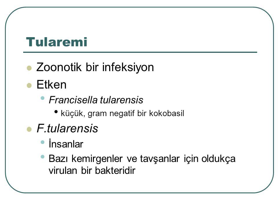 Tularemi Zoonotik bir infeksiyon Etken F.tularensis