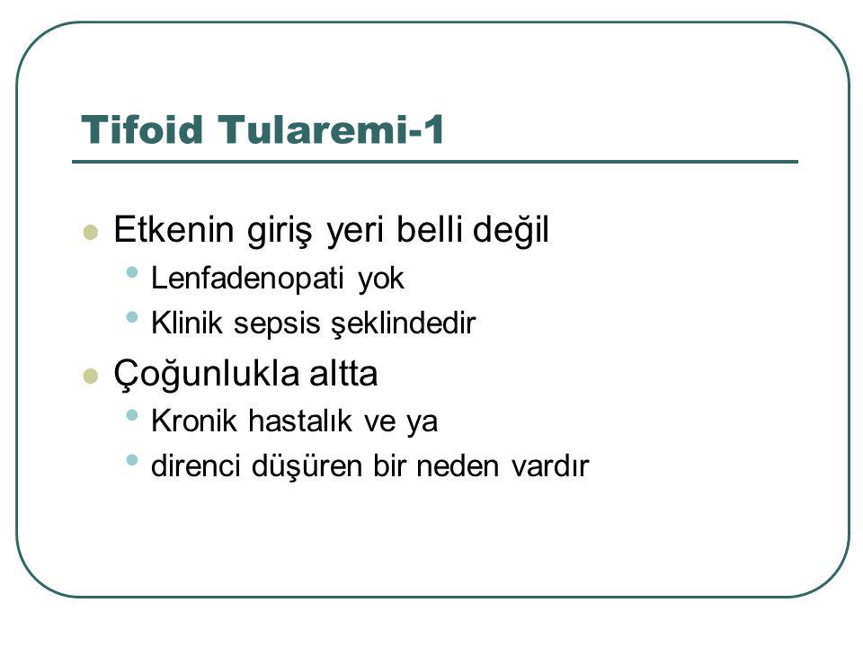 Tifoid Tularemi-1 Etkenin giriş yeri belli değil Çoğunlukla altta