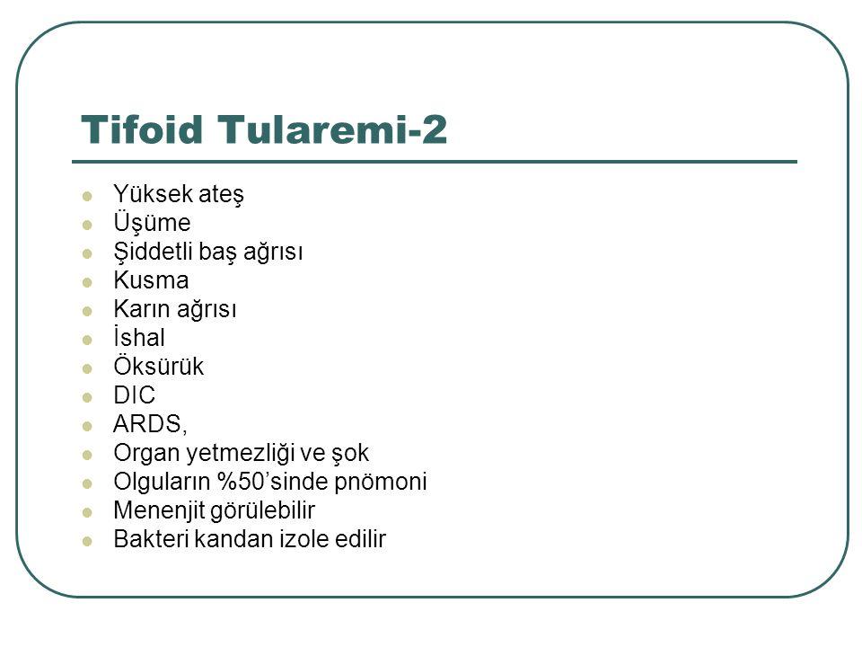 Tifoid Tularemi-2 Yüksek ateş Üşüme Şiddetli baş ağrısı Kusma