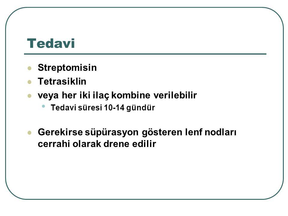 Tedavi Streptomisin Tetrasiklin veya her iki ilaç kombine verilebilir