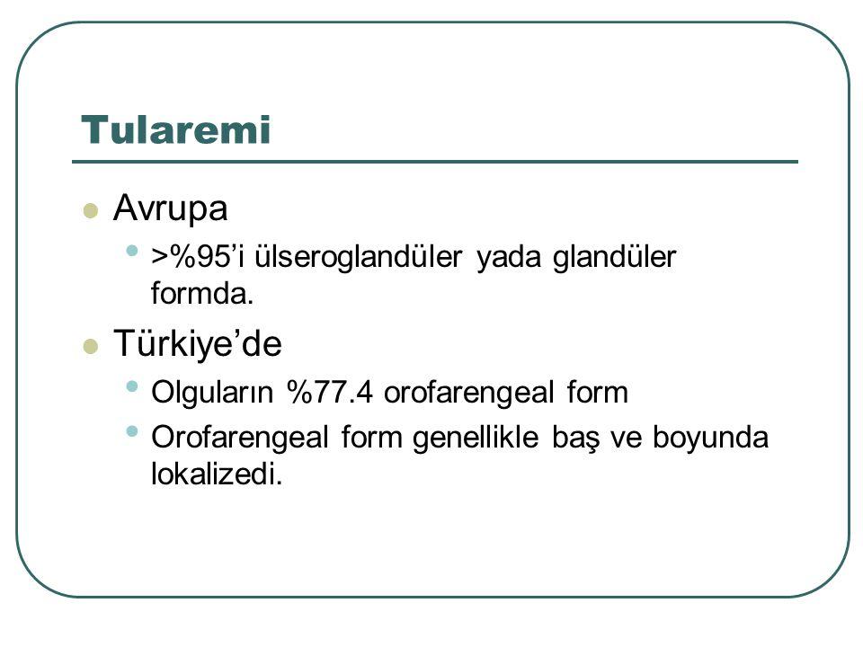 Tularemi Avrupa Türkiye'de