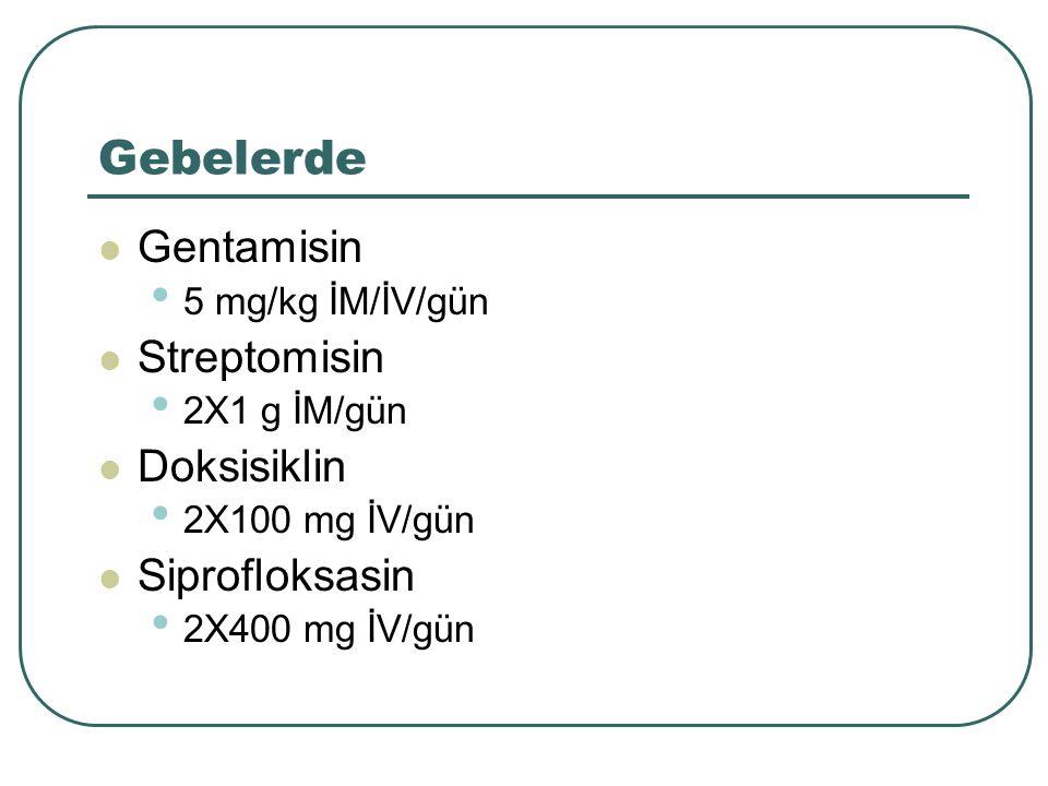 Gebelerde Gentamisin Streptomisin Doksisiklin Siprofloksasin