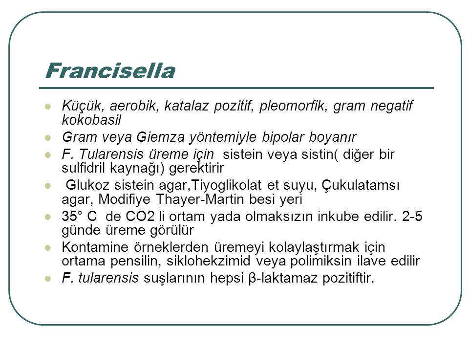 Francisella Küçük, aerobik, katalaz pozitif, pleomorfik, gram negatif kokobasil. Gram veya Giemza yöntemiyle bipolar boyanır.