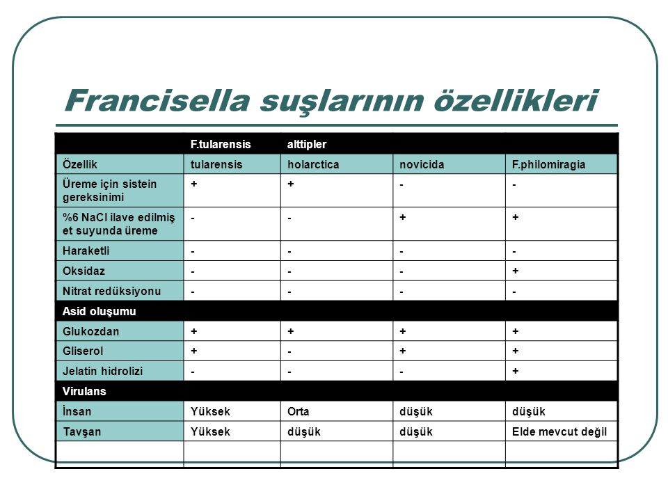 Francisella suşlarının özellikleri