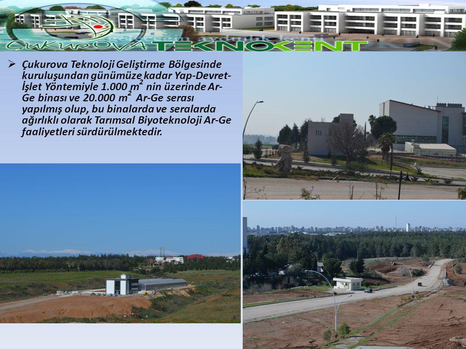 Çukurova Teknoloji Geliştirme Bölgesinde kuruluşundan günümüze kadar Yap-Devret-İşlet Yöntemiyle 1.000 m2 nin üzerinde Ar-Ge binası ve 20.000 m2 Ar-Ge serası yapılmış olup, bu binalarda ve seralarda ağırlıklı olarak Tarımsal Biyoteknoloji Ar-Ge faaliyetleri sürdürülmektedir.