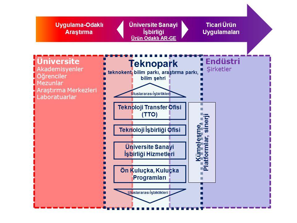 Teknopark Üniversite Endüstri Kümeleşme, Platformlar, sinerji