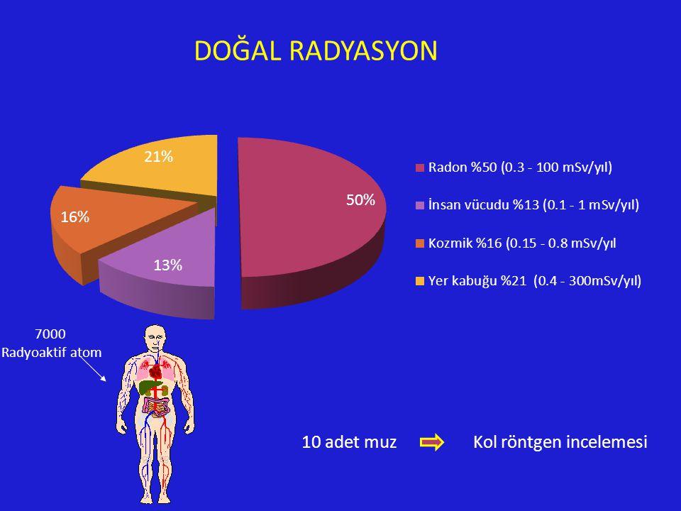 10 adet muz Kol röntgen incelemesi