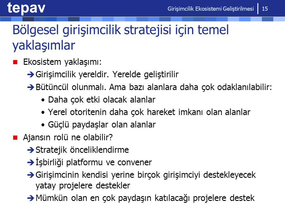 Bölgesel girişimcilik stratejisi için temel yaklaşımlar