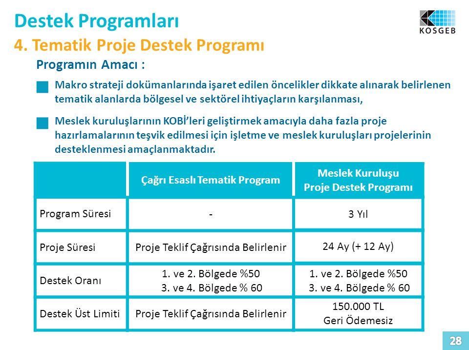 Çağrı Esaslı Tematik Program