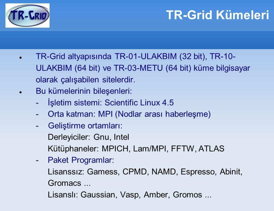 TR-Grid Kümeleri