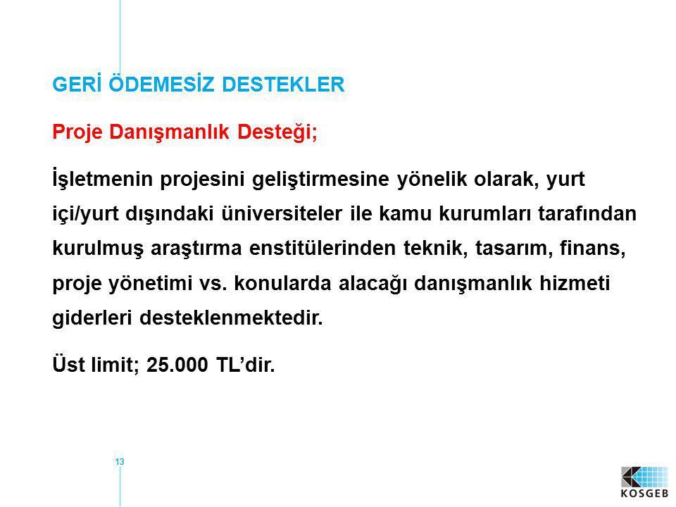 GERİ ÖDEMESİZ DESTEKLER Proje Danışmanlık Desteği;