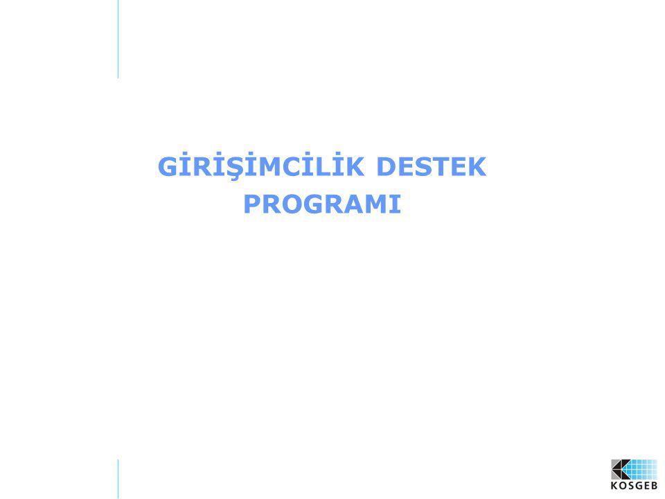 GİRİŞİMCİLİK DESTEK PROGRAMI