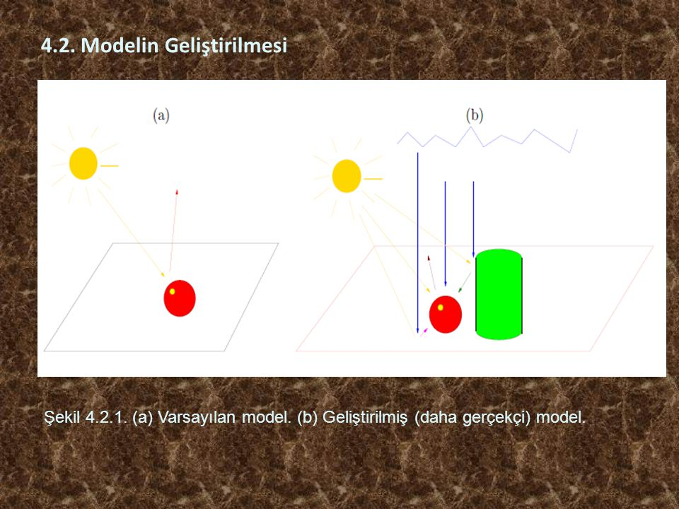 4.2. Modelin Geliştirilmesi