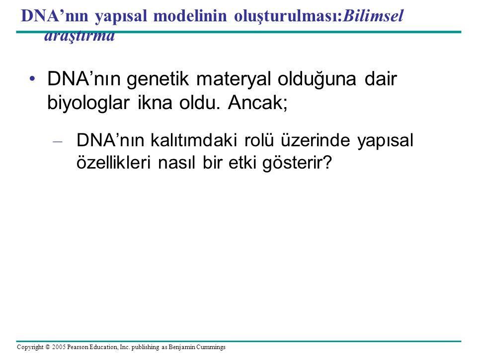 DNA'nın yapısal modelinin oluşturulması:Bilimsel araştırma