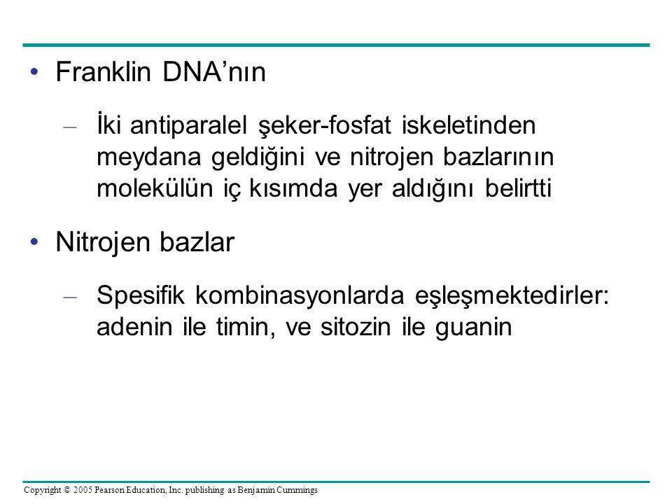 Franklin DNA'nın Nitrojen bazlar