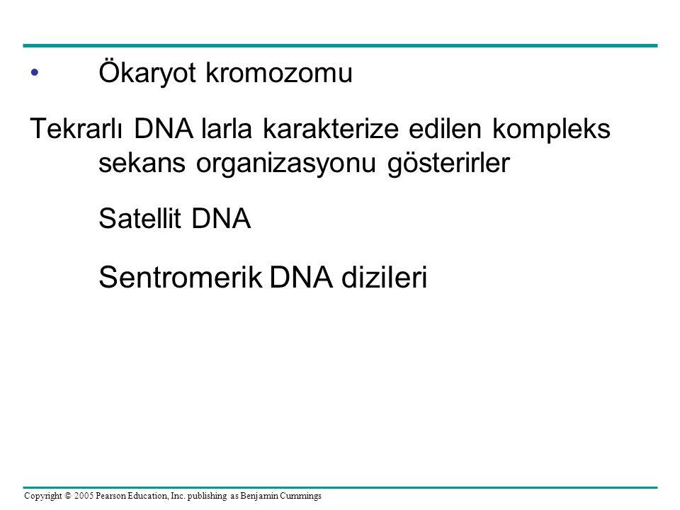 Sentromerik DNA dizileri