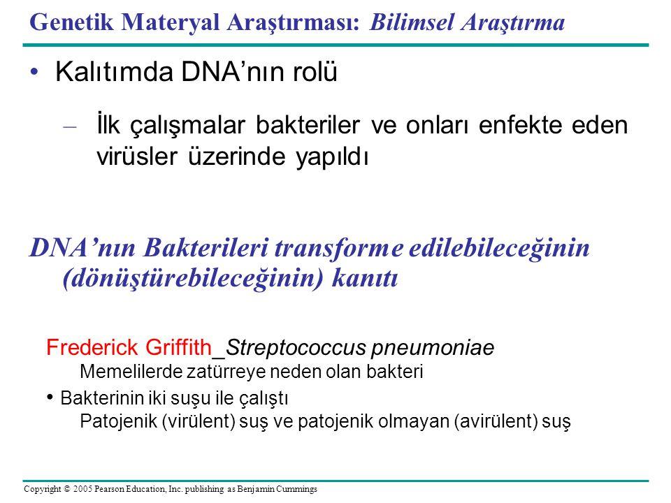 Genetik Materyal Araştırması: Bilimsel Araştırma