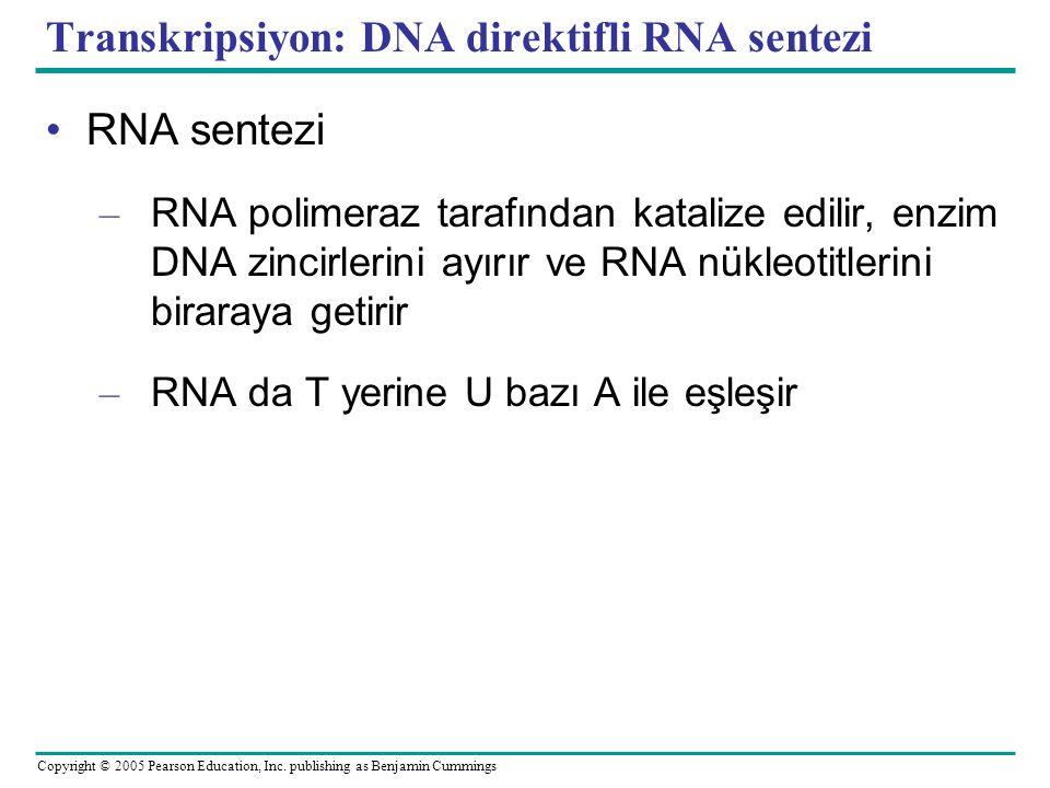 Transkripsiyon: DNA direktifli RNA sentezi
