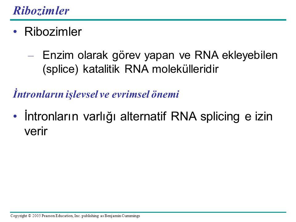 İntronların varlığı alternatif RNA splicing e izin verir