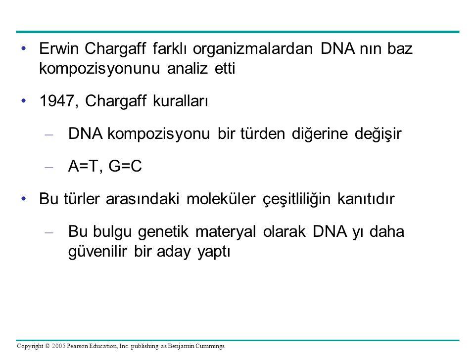 Erwin Chargaff farklı organizmalardan DNA nın baz kompozisyonunu analiz etti
