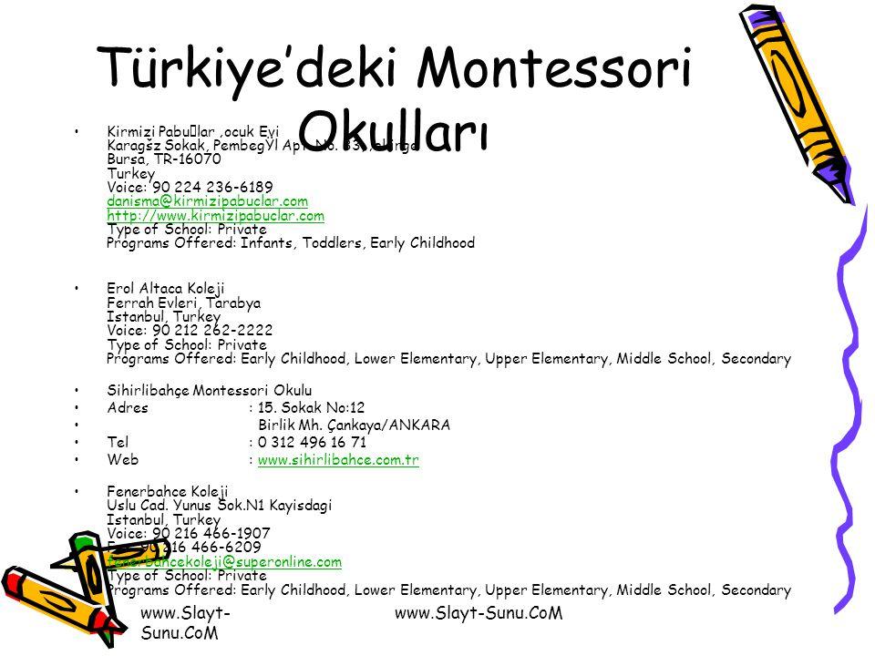 Türkiye'deki Montessori Okulları