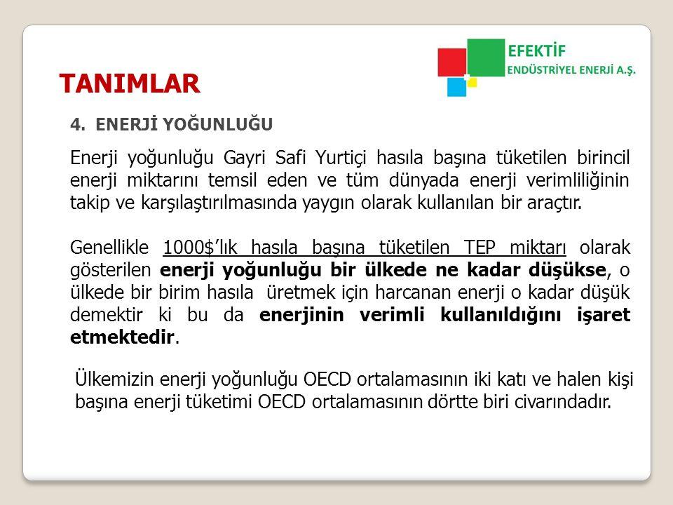 TANIMLAR ENERJİ YOĞUNLUĞU.