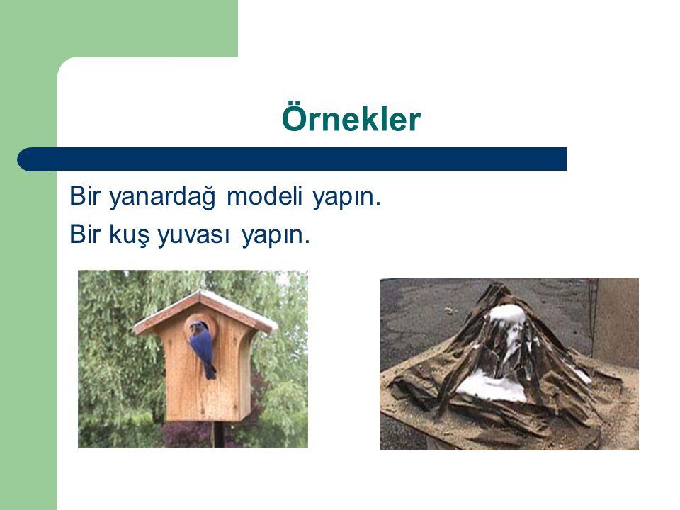 Örnekler Bir yanardağ modeli yapın. Bir kuş yuvası yapın.
