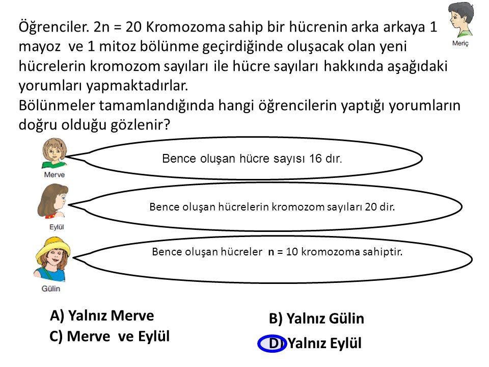 Öğrenciler. 2n = 20 Kromozoma sahip bir hücrenin arka arkaya 1 mayoz ve 1 mitoz bölünme geçirdiğinde oluşacak olan yeni hücrelerin kromozom sayıları ile hücre sayıları hakkında aşağıdaki yorumları yapmaktadırlar.