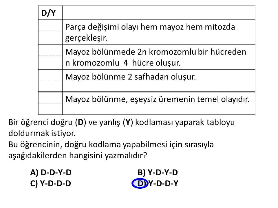 D/Y Parça değişimi olayı hem mayoz hem mitozda gerçekleşir. Mayoz bölünmede 2n kromozomlu bir hücreden n kromozomlu 4 hücre oluşur.