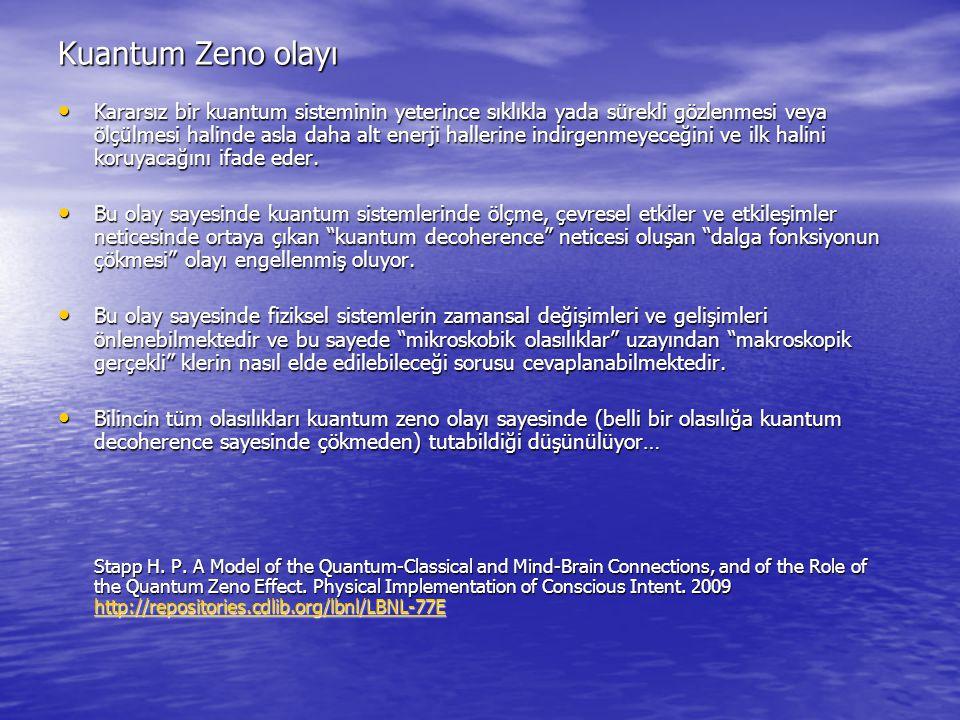 Kuantum Zeno olayı