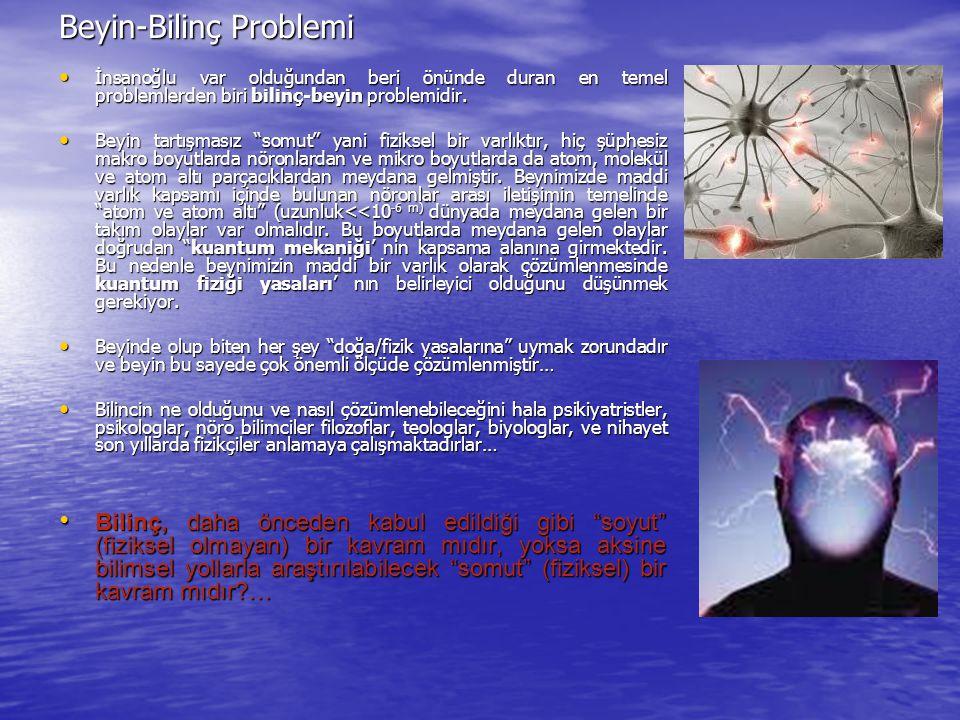 Beyin-Bilinç Problemi