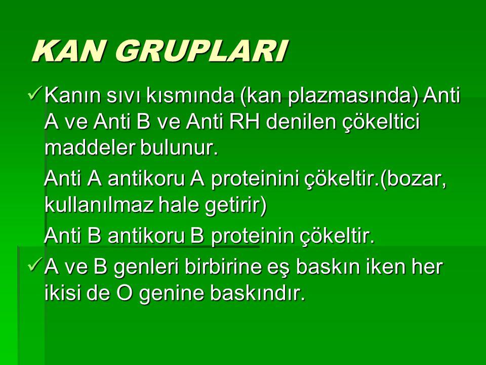 KAN GRUPLARI Kanın sıvı kısmında (kan plazmasında) Anti A ve Anti B ve Anti RH denilen çökeltici maddeler bulunur.