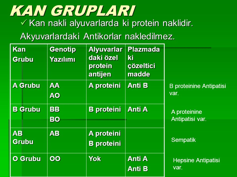 KAN GRUPLARI Kan nakli alyuvarlarda ki protein naklidir.