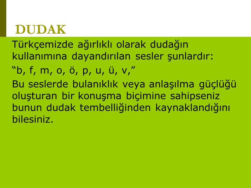 DUDAK Türkçemizde ağırlıklı olarak dudağın kullanımına dayandırılan sesler şunlardır: b, f, m, o, ö, p, u, ü, v,