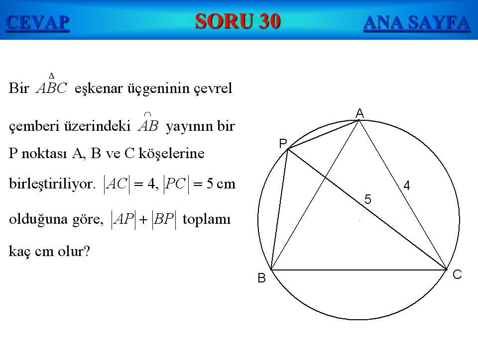 CEVAP SORU 30 ANA SAYFA