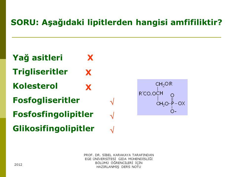 SORU: Aşağıdaki lipitlerden hangisi amfifiliktir