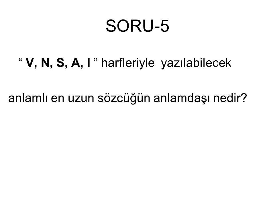 SORU-5 V, N, S, A, I harfleriyle yazılabilecek
