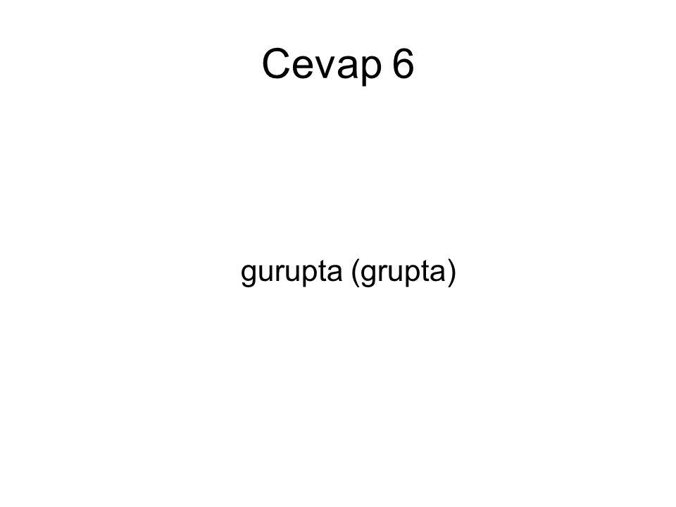 Cevap 6 gurupta (grupta)