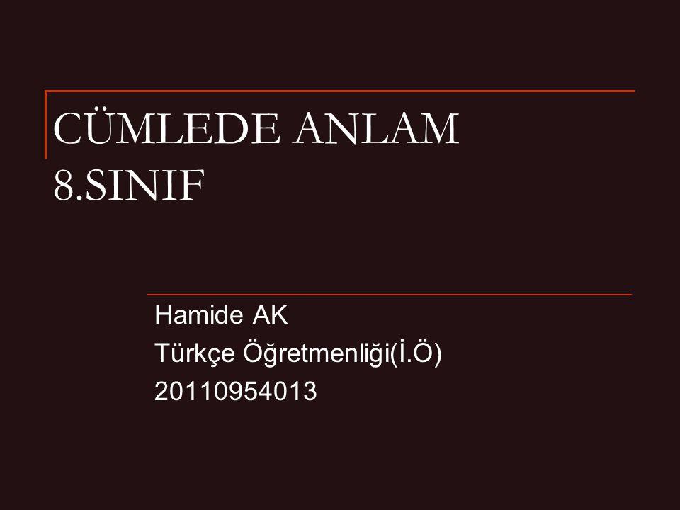 Hamide AK Türkçe Öğretmenliği(İ.Ö) 20110954013