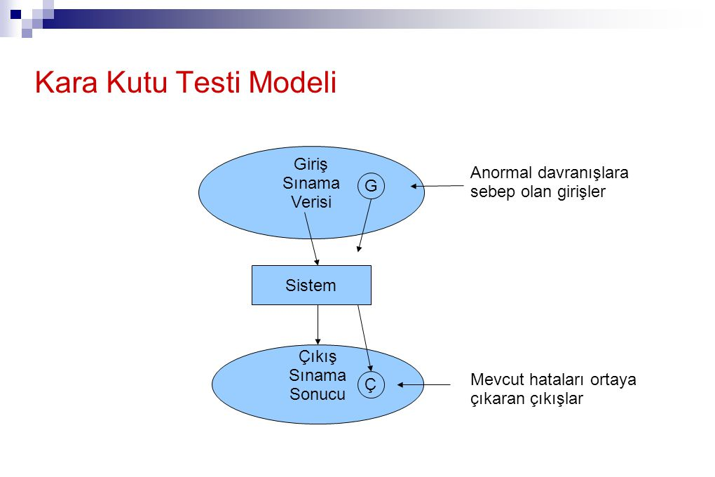 Kara Kutu Testi Modeli Giriş Sınama Anormal davranışlara Verisi