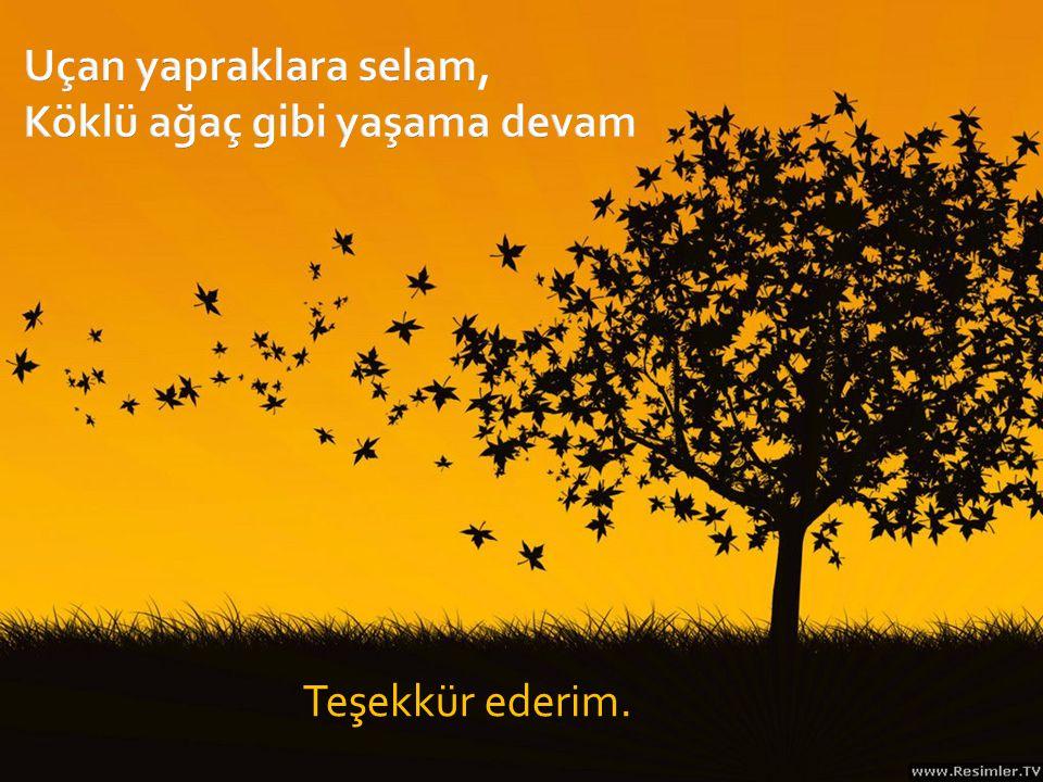 Uçan yapraklara selam, Köklü ağaç gibi yaşama devam