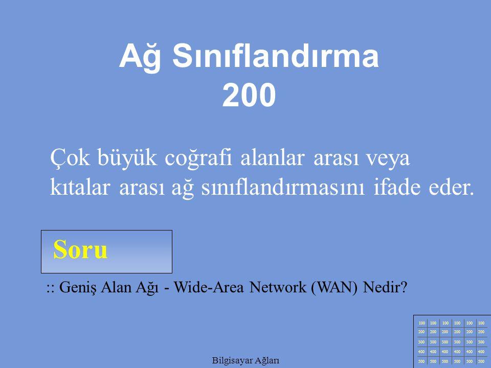 Ağ Sınıflandırma 200 Çok büyük coğrafi alanlar arası veya kıtalar arası ağ sınıflandırmasını ifade eder.
