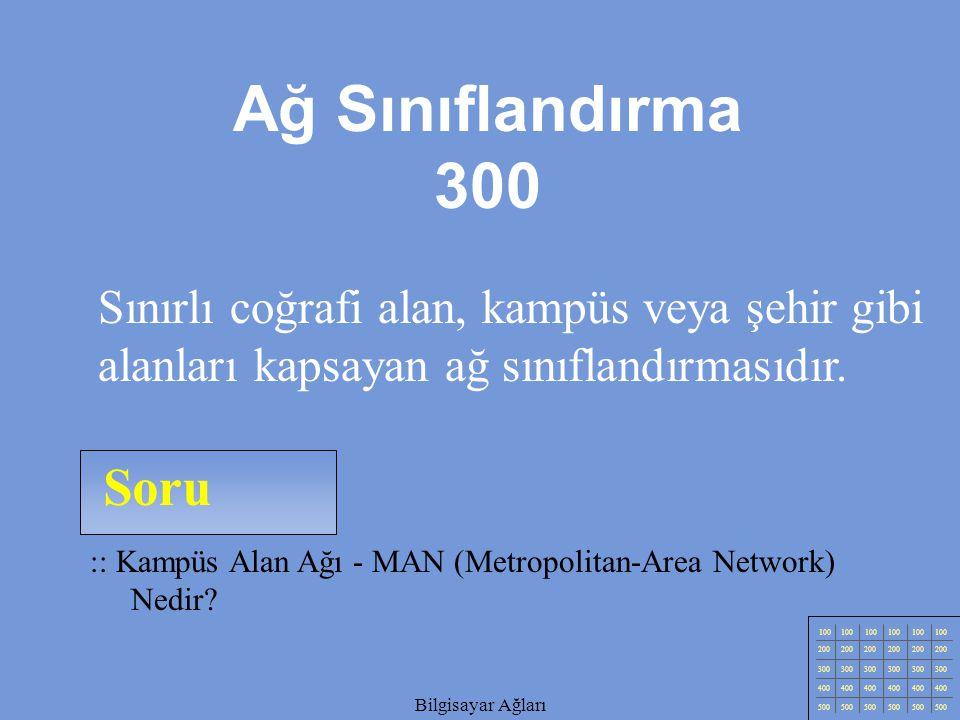Ağ Sınıflandırma 300 Sınırlı coğrafi alan, kampüs veya şehir gibi alanları kapsayan ağ sınıflandırmasıdır.