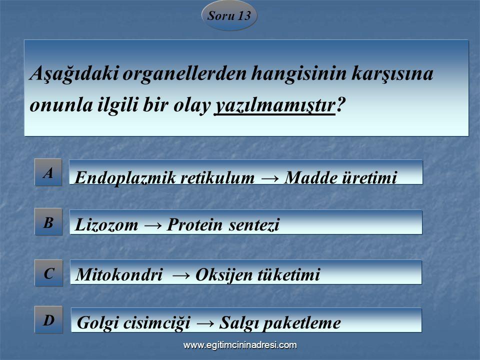 Soru 13 Aşağıdaki organellerden hangisinin karşısına onunla ilgili bir olay yazılmamıştır A. Endoplazmik retikulum → Madde üretimi.