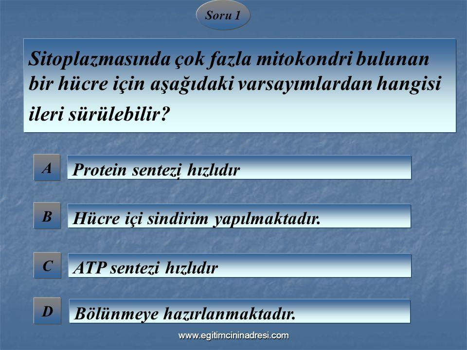 Soru 1 Sitoplazmasında çok fazla mitokondri bulunan bir hücre için aşağıdaki varsayımlardan hangisi ileri sürülebilir