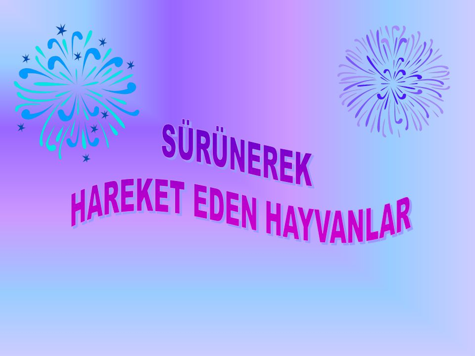 HAREKET EDEN HAYVANLAR
